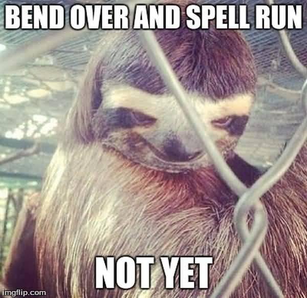 Amusing cool rapist sloth meme photo