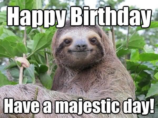 Amusing greate birthday sloth meme photo