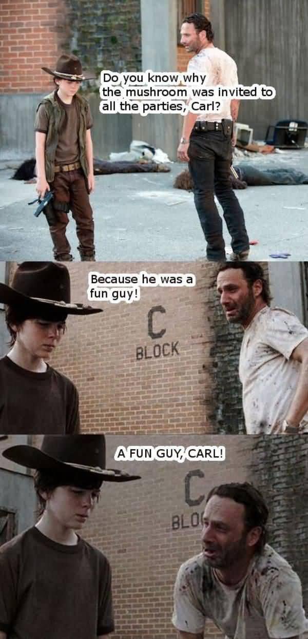 Amusing walking dead rick meme photo