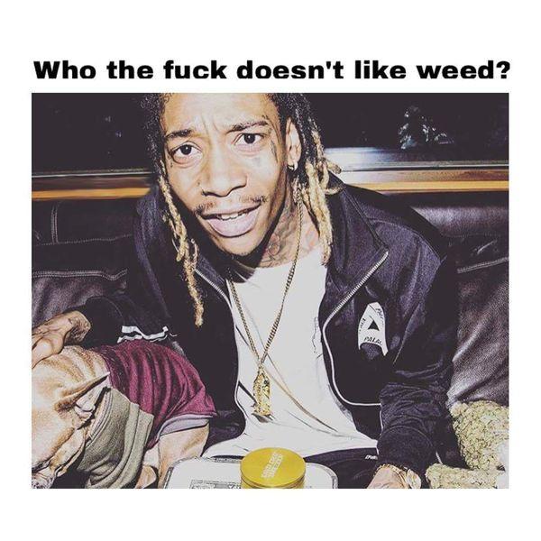 Amusing weed head meme image