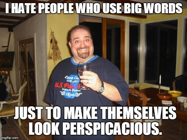 Big Words Meme Funny Image Photo Joke 09