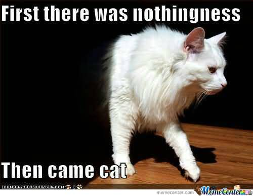 Ceiling Cat Meme Funny Image Photo Joke 05