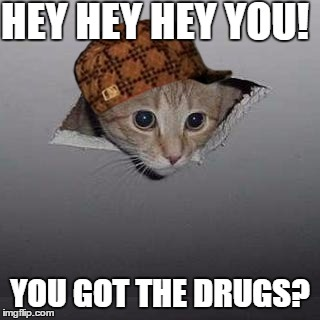 Ceiling Cat Meme Funny Image Photo Joke 07