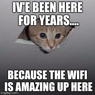 Ceiling Cat Meme Funny Image Photo Joke 09