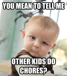 Chores Meme Funny Image Photo Joke 11
