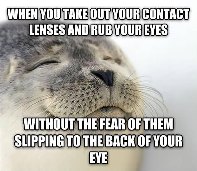 Contact Lenses Meme Funny Image Photo Joke 04