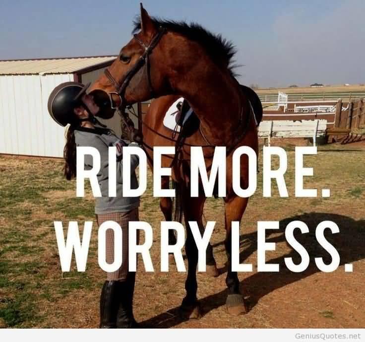 Cute Horse Quotes Meme Image 13