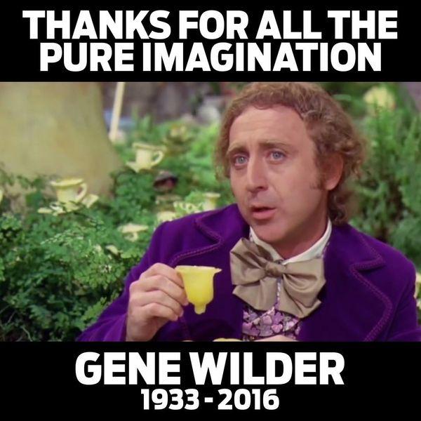 Funniest Gene Wilder Meme Picture