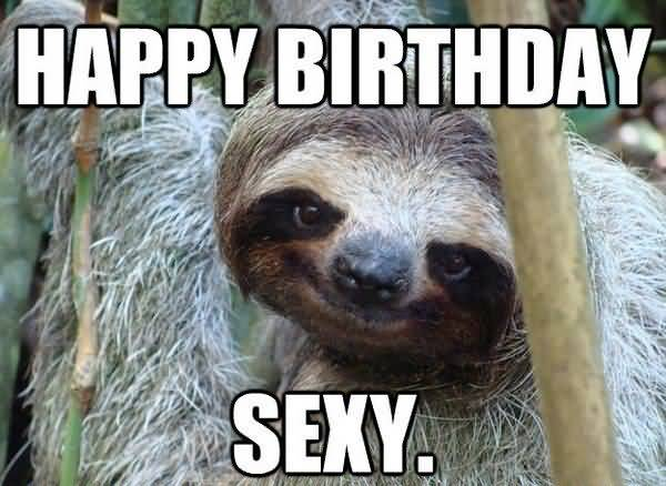 Funniest cool birthday sloth meme image