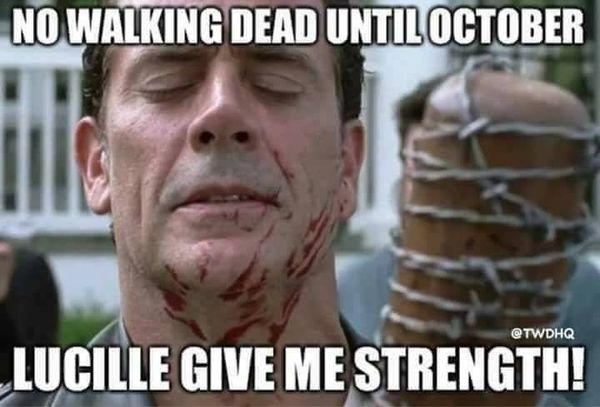 Funniest the walking dead memes gifs