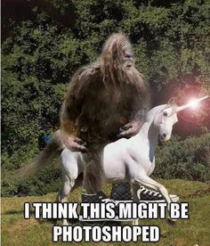 Funny Bigfoot Memes Funny Image Photo Joke 10 Quotesbae