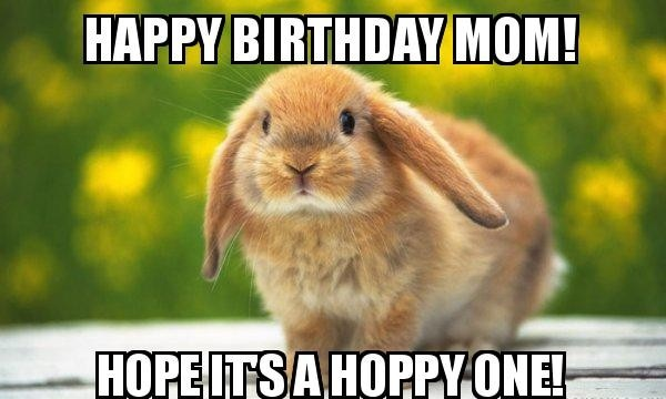 Funny Birthday Memes For Mom Joke 14