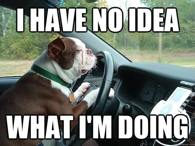 Funny Driving Meme Image Photo Joke 09