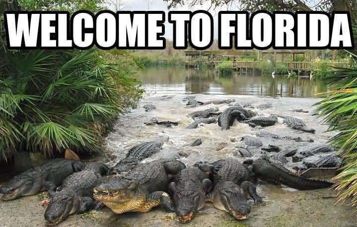 Funny Florida Meme Funny Image Photo Joke 03
