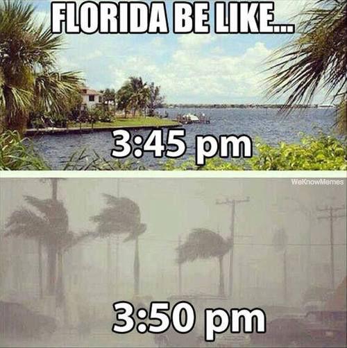 Funny Florida Meme Funny Image Photo Joke 09
