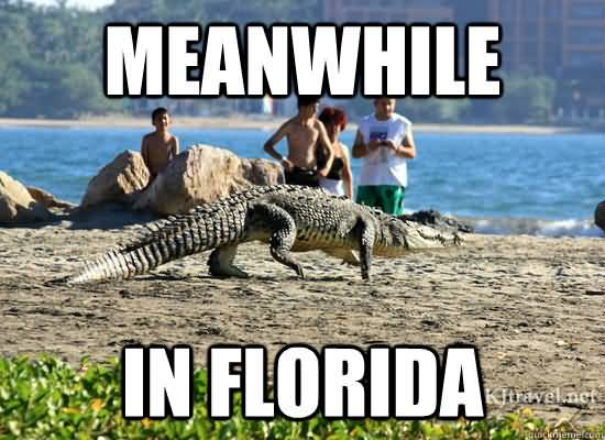 Funny Florida Meme Funny Image Photo Joke 10