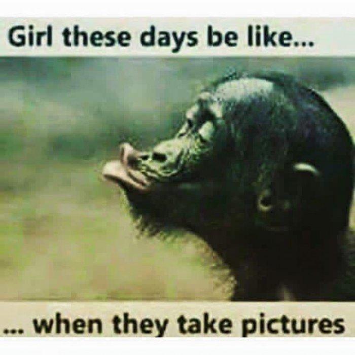 Funny Memes 2016 Funny Image Photo Joke 14
