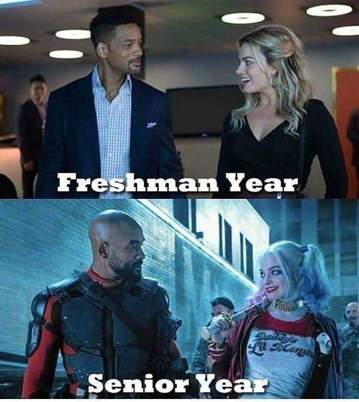 Funny Suicide Squad Memes Funny Image Photo Joke 14