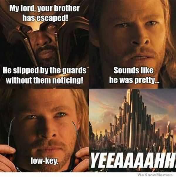 Funny amazing funny thor memes joke