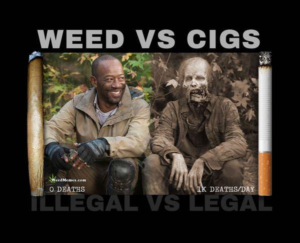 Funny cannabis memes image