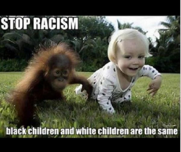 Funny cool funny racist pictures with captions memes