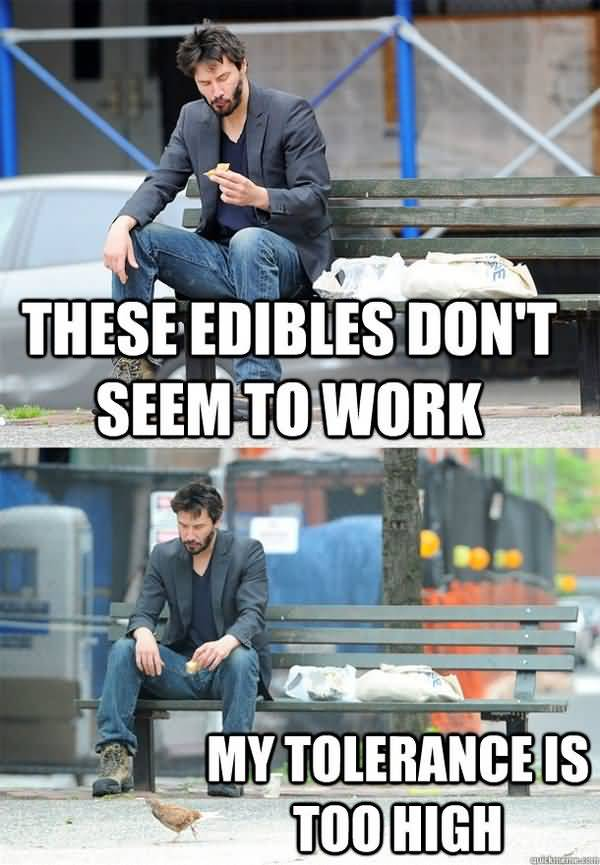 Funny edibles meme picture