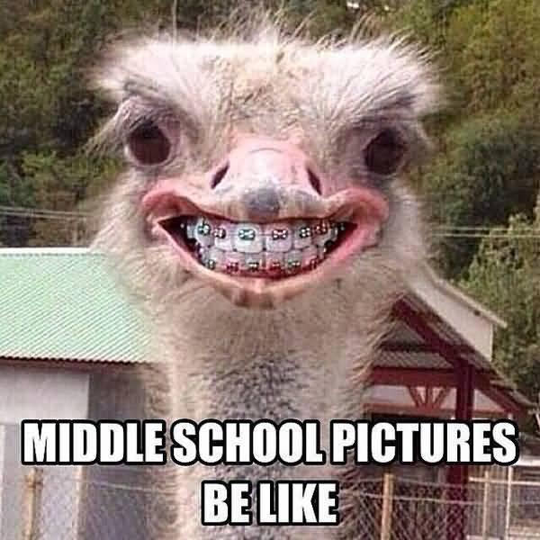Funny middle school memes jokes