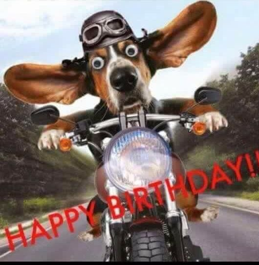 Happy Birthday Funny Comic Jokes: 15 Top Happy Birthday Motorcycle Meme Jokes