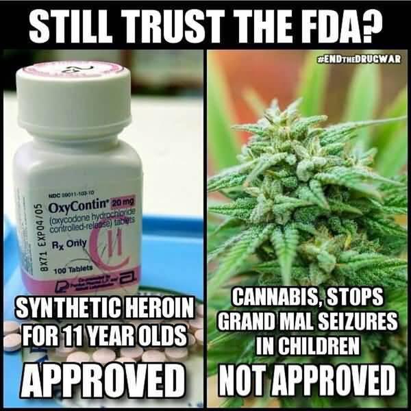 Hilarious medical marijuana meme joke