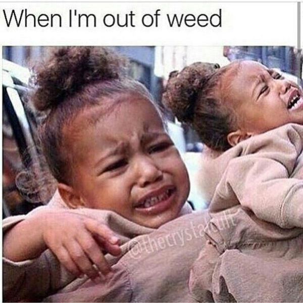 Hilarious out of weed meme picture