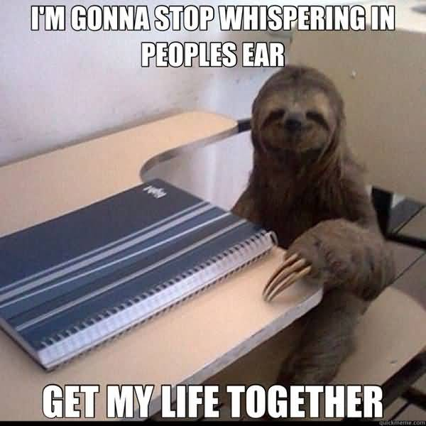 Hilarious sloth whispering in ear meme picture