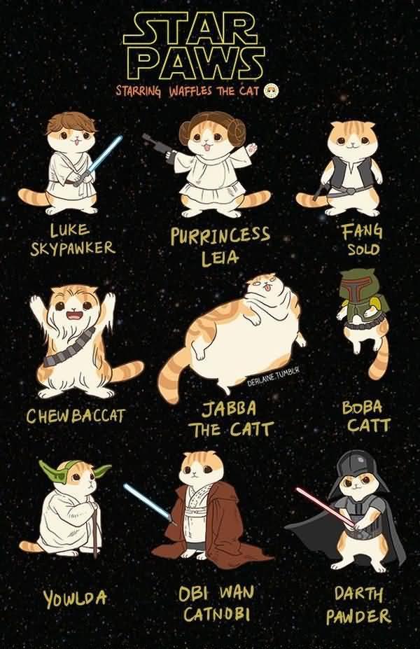 Hilarious star wars animals heroes meme jokes