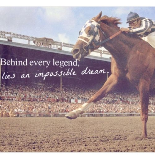 Horse Jumping Quotes Meme Image 02 | QuotesBae