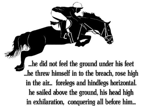 Horse Jumping Quotes Meme Image 09 | QuotesBae