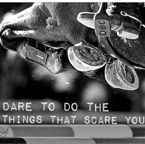 Horse Jumping Quotes Meme Image 18 | QuotesBae