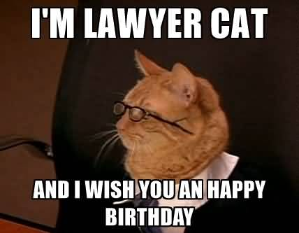 Lawyer Birthday Meme Joke Image 15