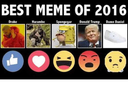Memes About 2016 Funny Image Photo Joke 08