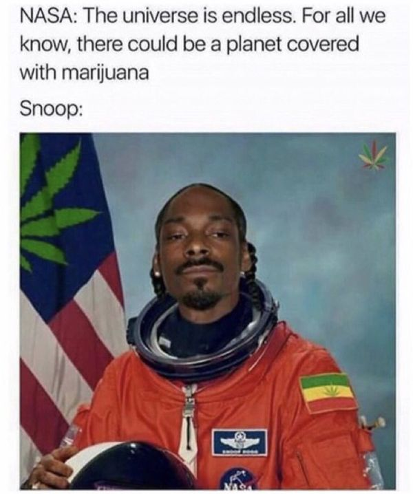 Most hilarious weed memes picture