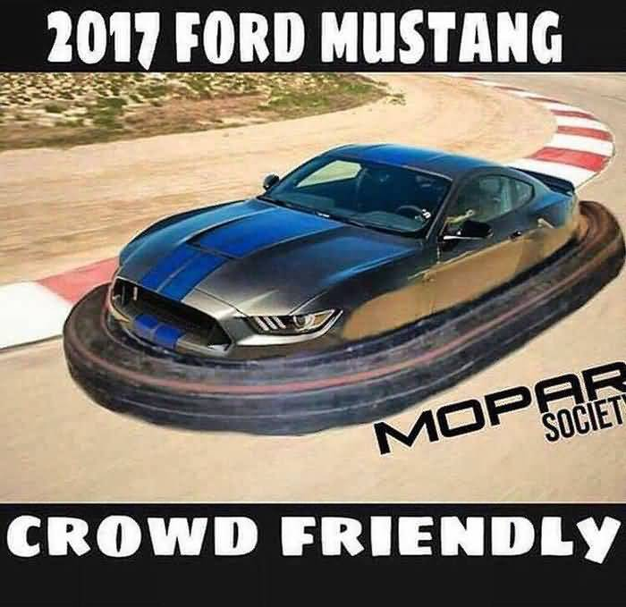 Mustang Meme Image Photo Joke 01