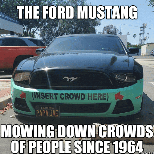 Mustang Meme Image Photo Joke 06
