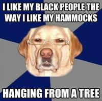 Racist Dog Meme Funny Image Photo Joke 01