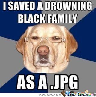 Racist Dog Meme Funny Image Photo Joke 05