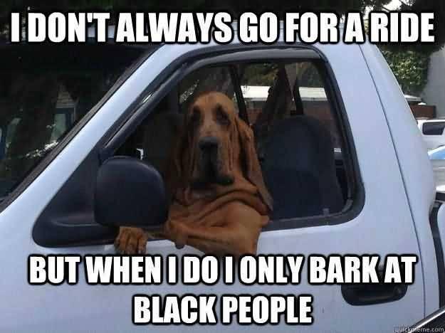Racist Dog Meme Funny Image Photo Joke 07