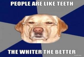 Racist Dog Meme Funny Image Photo Joke 11