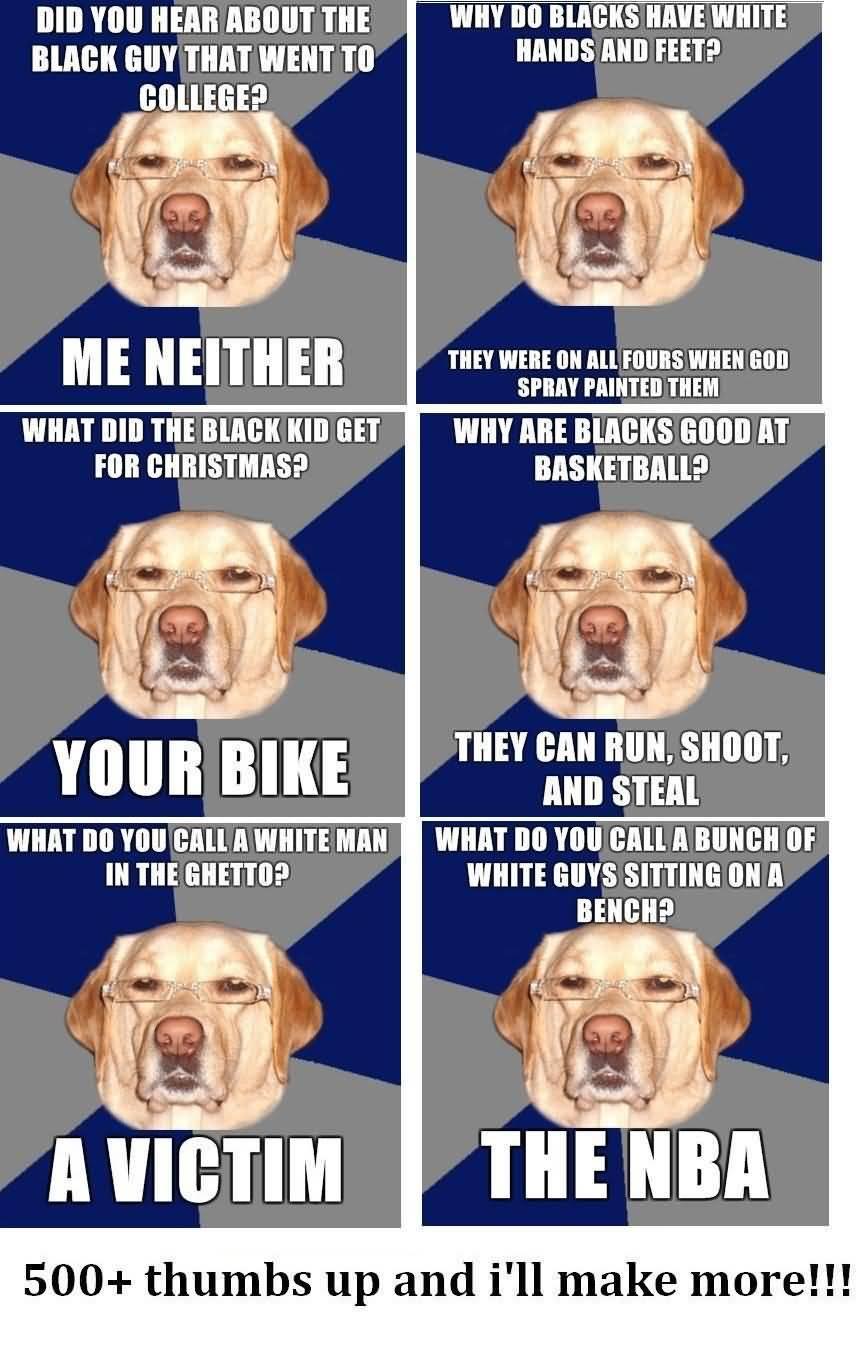 Racist Dog Meme Funny Image Photo Joke 13