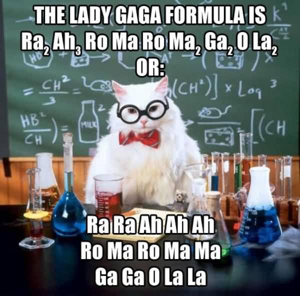 Science Cat Meme Funny Image Photo Joke 09