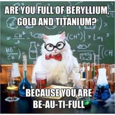 Science Cat Meme Funny Image Photo Joke 13