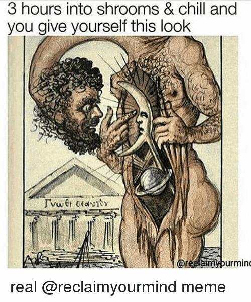 Shrooms Meme Funny Image Photo Joke 02