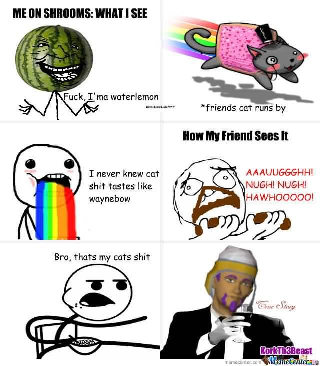 Shrooms Meme Funny Image Photo Joke 03