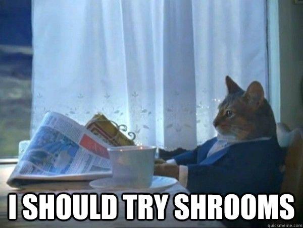 Shrooms Meme Funny Image Photo Joke 08